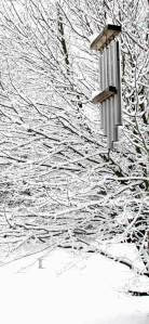 Snow chimes