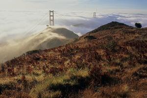 Marin fog and Golden Gate