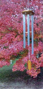 Red maple - wind chime