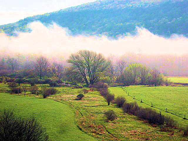 Farmland, Roseboom,NY